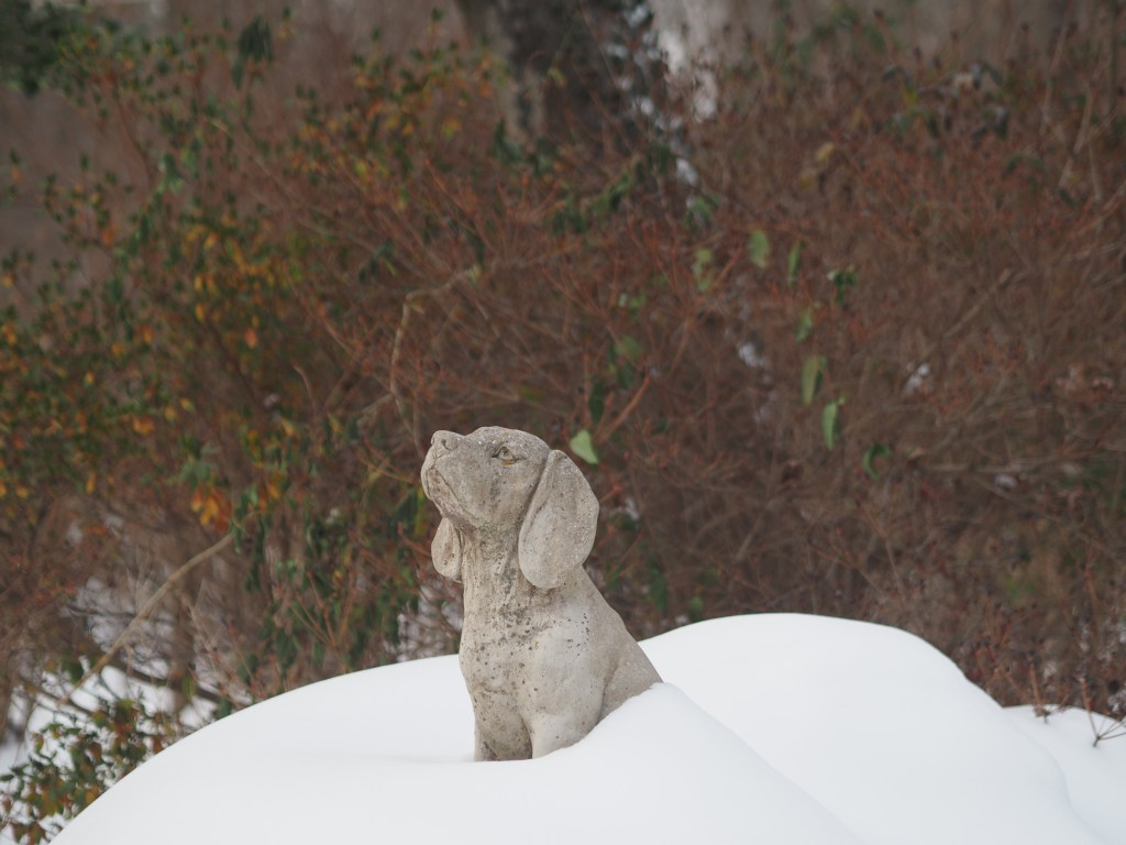 Dog statue after snowfall.
