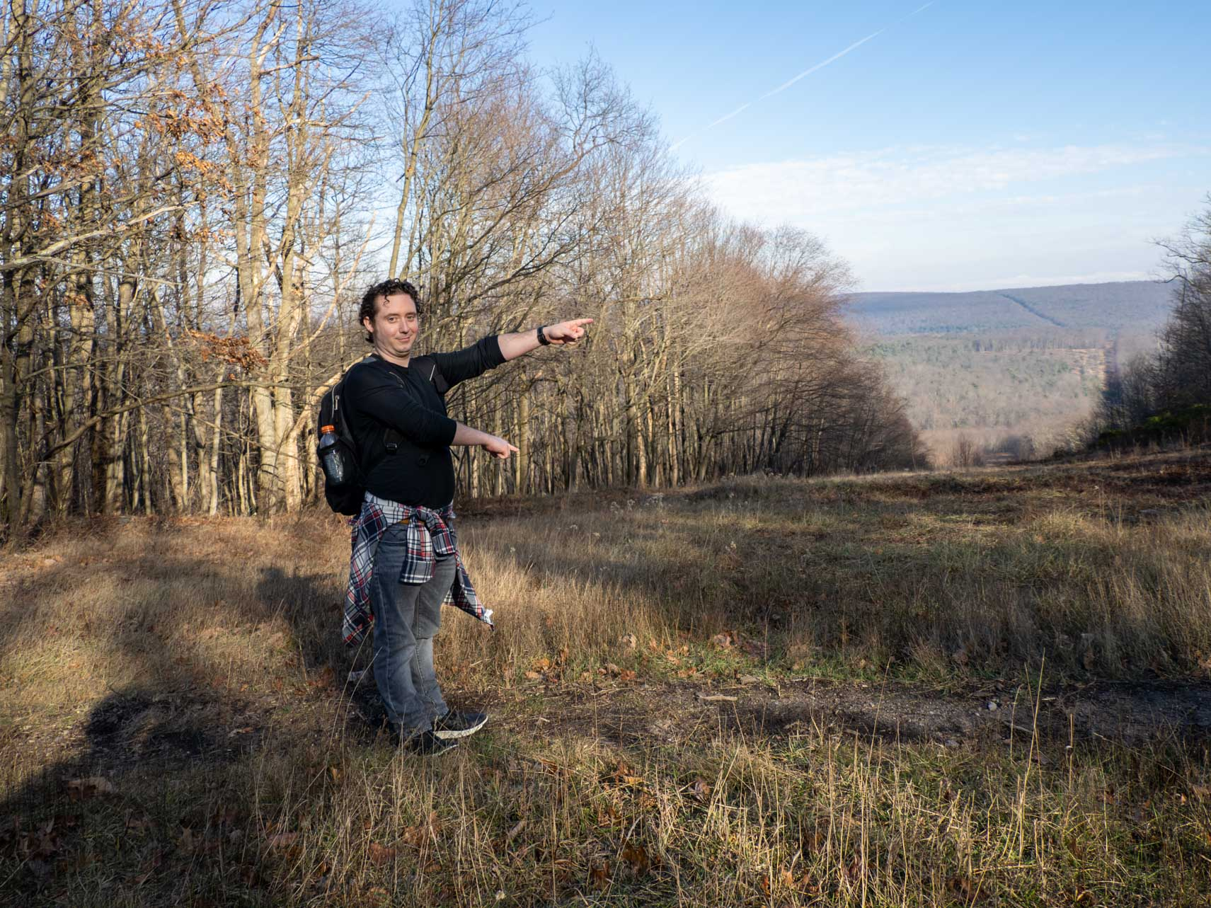 Andrew points at a clearing formed when part of the forest was felled for power lines.