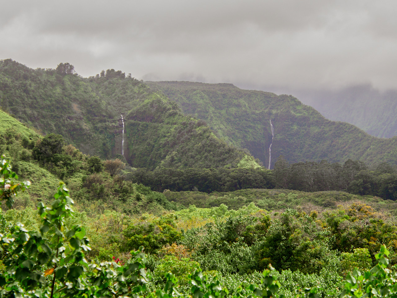 These dual waterfalls are the main attraction at the Wailua State Wayside.