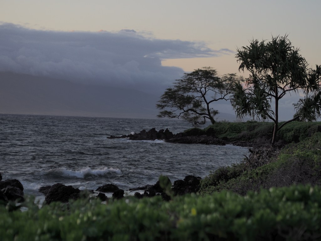 A view of the walking path in Wailea.